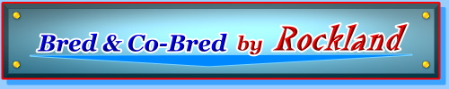 Bred & Co-Bred by ROCKLAND